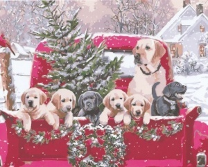 chrstmas_puppies