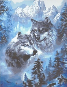 two_wolves_in_the_moutains